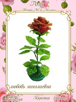 Галерея выпускников Роза от Марио 4fba1895e1e7574bd2cd84a3a655b97c