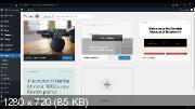 Разработка сайтов на Wordpress с нуля (2021)