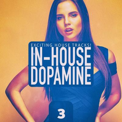 Various Artists - In-House Dopamine Vol. 3 (2021)