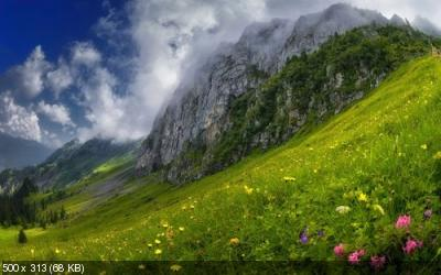 Wallpapers Mix №901