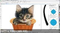 Corel Draw с нуля: Стартовый + Продвинутый (2020/PCRec/Rus)