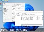Windows 11 Enterprise x64 21H2.22000.132 v.63.21 (RUS/2021)
