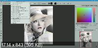 CODIJY Colorizer Pro 4.1.0 Portable by conservator