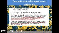 Применение грецкого ореха в современной медицине (2021/PCRec/Rus)
