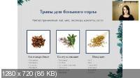 Травы против простуды (2021/PCRec/Rus)