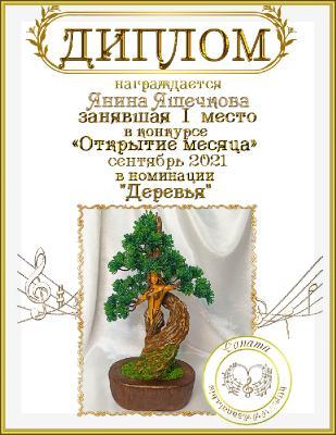 Шкатулка гордости Янины Яшечковой _9fe867855621169f1a1fa7db195347da