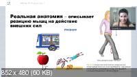Вебинар - «ПРО Ягодицы» (2021/WEBRip/Rus)