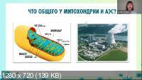 Антивирусный иммунитет + Здоровый кишечник (2021/PCRec/Rus)